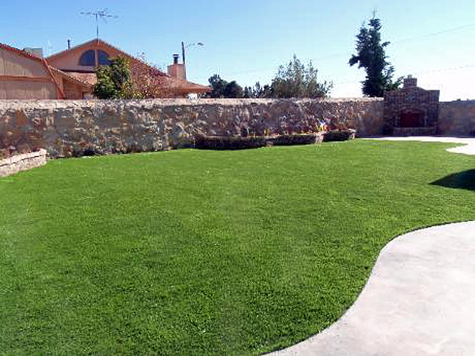 Best artificial grass nakaibito new mexico landscape for New landscape design