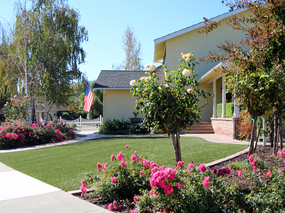 Best artificial grass sedillo new mexico landscape design for Best grass for landscaping
