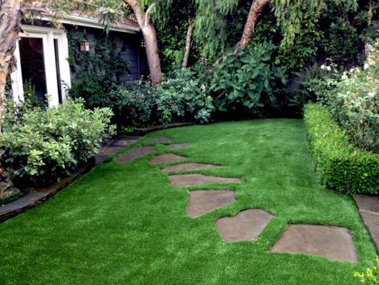 Artificial Grass Photos: Artificial Grass Carpet Chamisal, New Mexico Lawn And Landscape, Backyard Landscape Ideas