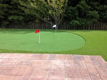 Artificial Grass Photos: Artificial Grass Carpet Pueblitos, New Mexico Indoor Putting Greens, Backyards