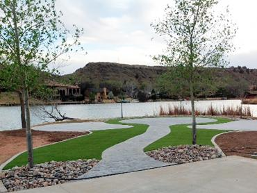 Artificial Grass Photos: Artificial Grass Carpet Sedillo, New Mexico Backyard Deck Ideas