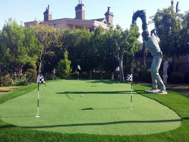 Artificial Grass Photos: Artificial Grass Clayton, New Mexico City Landscape, Backyard Makeover