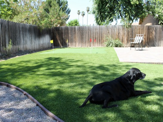 Artificial Grass Photos: Artificial Grass Deming, New Mexico Home And Garden, Backyard Design