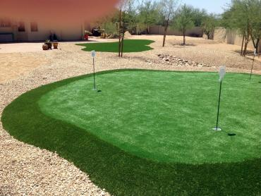 Artificial Grass Photos: Artificial Grass Edgewood, New Mexico Putting Green Grass, Beautiful Backyards