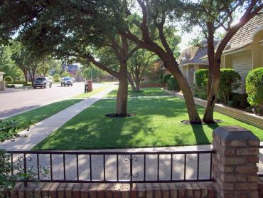 Artificial Grass Photos: Artificial Grass Installation Apache Creek, New Mexico Gardeners, Front Yard Design