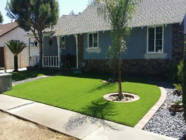 Artificial Grass Photos: Artificial Grass Installation Cotton City, New Mexico Landscape Ideas, Landscaping Ideas For Front Yard