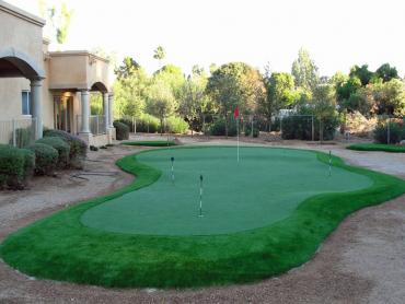 Artificial Grass Photos: Artificial Grass Ojo Amarillo, New Mexico How To Build A Putting Green, Beautiful Backyards