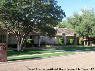 Artificial Grass Photos: Artificial Grass Peralta, New Mexico Landscape Design, Front Yard Landscape Ideas