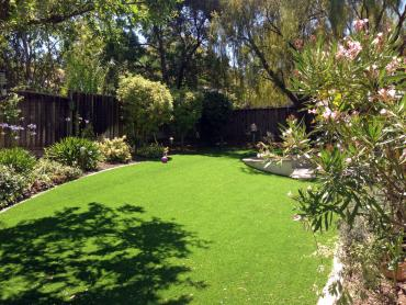 Artificial Grass Photos: Artificial Grass Torreon, New Mexico Landscaping Business, Backyard Ideas