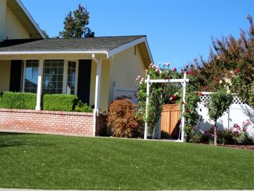 Artificial Grass Photos: Artificial Lawn Animas, New Mexico Lawns, Small Front Yard Landscaping