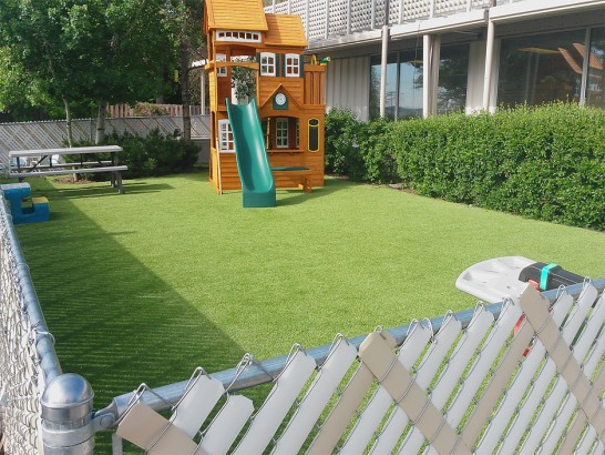 Artificial Grass Photos: Artificial Lawn Cannon Air Force Base, New Mexico Gardeners, Backyard Landscape Ideas