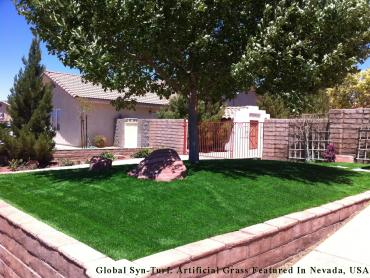 Artificial Lawn Cedar Crest, New Mexico Landscaping Business, Small Front Yard Landscaping artificial grass