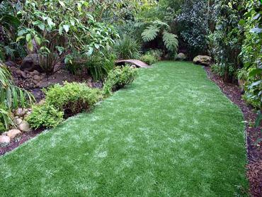 Artificial Lawn Chaparral, New Mexico Landscaping, Backyards artificial grass