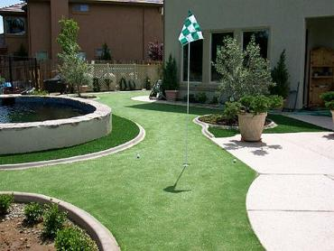Artificial Grass Photos: Artificial Lawn Clovis, New Mexico Landscape Design, Beautiful Backyards