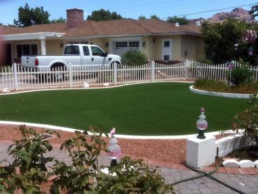 Artificial Grass Photos: Artificial Lawn San Juan, New Mexico Roof Top, Front Yard Landscaping Ideas