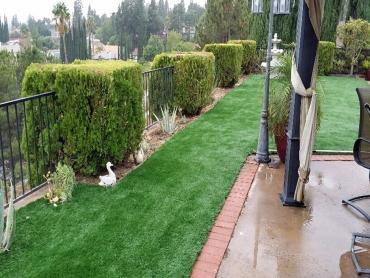 Artificial Grass Photos: Artificial Lawn Windmill, New Mexico Landscape Ideas, Backyard Ideas