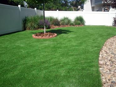 Artificial Grass Photos: Artificial Turf Cost Adelino, New Mexico Backyard Playground, Backyard