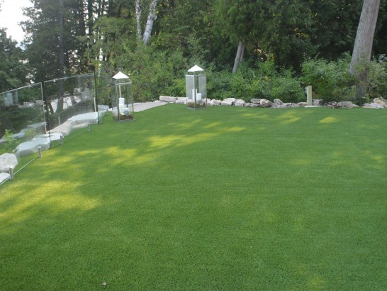 Artificial Grass Photos: Artificial Turf Cost Adelino, New Mexico Lawn And Landscape, Backyard Makeover