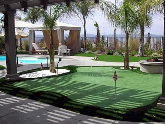 Artificial Grass Photos: Artificial Turf Cost Costilla, New Mexico Garden Ideas, Small Backyard Ideas