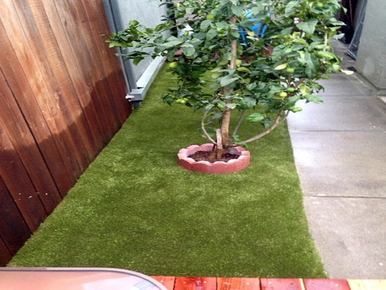 Artificial Turf Cost Logan, New Mexico Indoor Dog Park, Small Backyard Ideas artificial grass