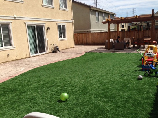 Artificial Grass Photos: Artificial Turf Cost Sandia Knolls, New Mexico Garden Ideas, Small Backyard Ideas