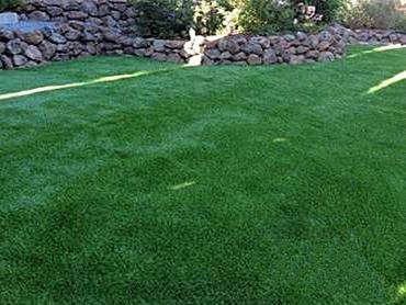 Artificial Grass Photos: Artificial Turf Installation Melrose, New Mexico Design Ideas, Small Backyard Ideas