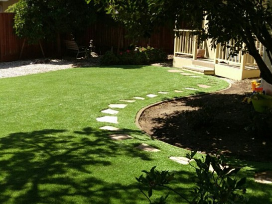 Best Artificial Grass El Cerro, New Mexico Backyard Deck Ideas, Backyard artificial grass