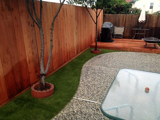 Best Artificial Grass Gila, New Mexico Fake Grass For Dogs, Backyard Landscaping Ideas artificial grass