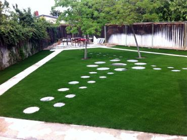 Artificial Grass Photos: Fake Grass Alamo, New Mexico Rooftop, Backyard Landscaping