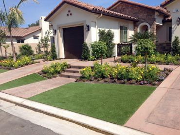 Artificial Grass Photos: Fake Grass Carpet Casa Colorada, New Mexico Gardeners, Front Yard Ideas