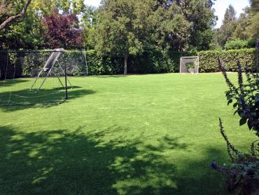 Artificial Grass Photos: Fake Grass Carpet Datil, New Mexico Red Turf, Backyard Design