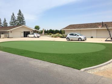 Artificial Grass Photos: Fake Grass Carpet Dixon, New Mexico Indoor Putting Greens, Front Yard Landscape Ideas