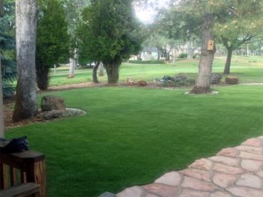 Artificial Grass Photos: Fake Grass Carpet Ranchos de Taos, New Mexico Landscape Ideas, Front Yard Landscaping Ideas