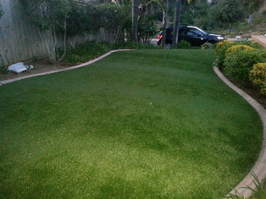 Artificial Grass Photos: Fake Grass Carpet San Antonito, New Mexico Landscaping, Front Yard Landscaping