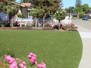 Artificial Grass Photos: Fake Grass San Pedro, New Mexico Lawn And Landscape, Landscaping Ideas For Front Yard