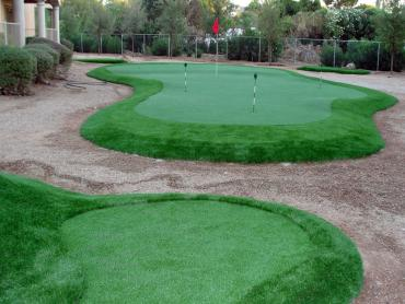 Fake Grass Tome, New Mexico Putting Green, Backyard Landscape Ideas artificial grass