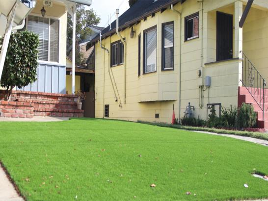 Artificial Grass Photos: Fake Grass Winston, New Mexico Landscape Photos, Small Front Yard Landscaping