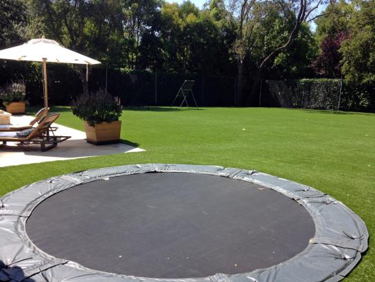 Artificial Grass Photos: Fake Lawn Nambe, New Mexico Design Ideas, Pool Designs