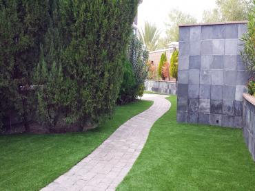 Artificial Grass Photos: Fake Turf Dulce, New Mexico Backyard Playground, Commercial Landscape
