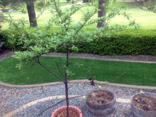Artificial Grass Photos: Fake Turf Kirtland, New Mexico Gardeners, Landscaping Ideas For Front Yard