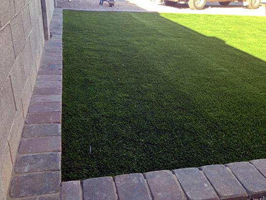 Artificial Grass Photos: Fake Turf Mosquero, New Mexico Dogs, Front Yard