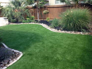 Artificial Grass Photos: Fake Turf Raton, New Mexico Pet Turf, Backyard Landscaping Ideas