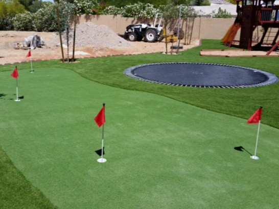 Artificial Grass Photos: Faux Grass Algodones, New Mexico Putting Greens, Backyard
