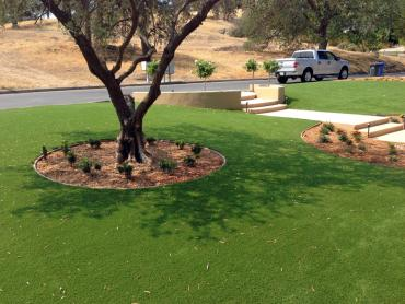 Artificial Grass Photos: Faux Grass Hanover, New Mexico Paver Patio, Front Yard Design