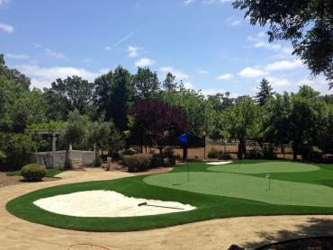 Artificial Grass Photos: Faux Grass North San Ysidro, New Mexico Backyard Putting Green, Front Yard Design