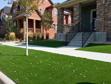 Faux Grass Sandia Knolls, New Mexico Garden Ideas, Front Yard Landscape Ideas artificial grass
