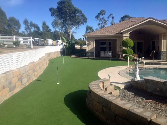 Artificial Grass Photos: Faux Grass Truchas, New Mexico City Landscape, Small Backyard Ideas