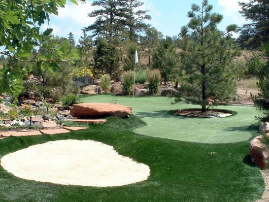 Artificial Grass Photos: Grass Carpet Cloudcroft, New Mexico Diy Putting Green, Backyard Landscape Ideas