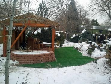 Artificial Grass Photos: Grass Carpet Cruzville, New Mexico Lawns, Backyard Design