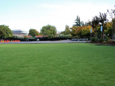 Artificial Grass Photos: Grass Carpet Enchanted Hills, New Mexico Lacrosse Playground